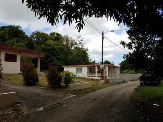 Road 441 Bo Aibonito Ward, San Sebastian, Puerto Rico