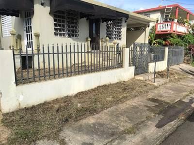 59 1st Los Machos Ward, Ceiba, Puerto Rico