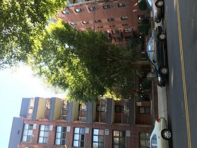 1270 E 51st St, Brooklyn, New York