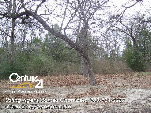 109 Private Road 916, Fairfield, Texas