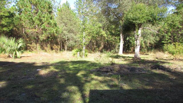 7755 Ne 132nd Pl, Citra, Florida